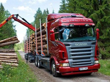 Круглый лес можно перевозить в контейнерах